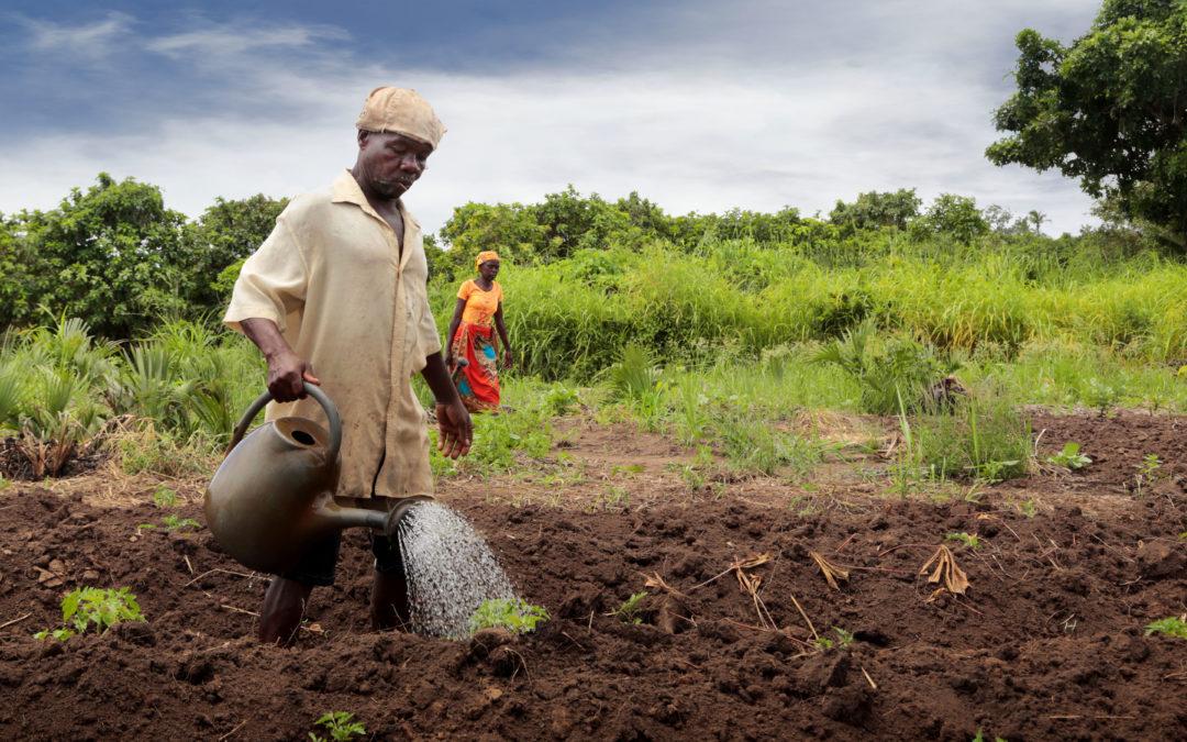 Semaine mondiale de l'eau 2020: l'eau et le changement climatique en période de COVID